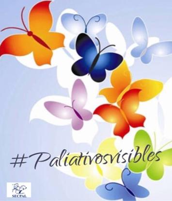 Paliativos visibles